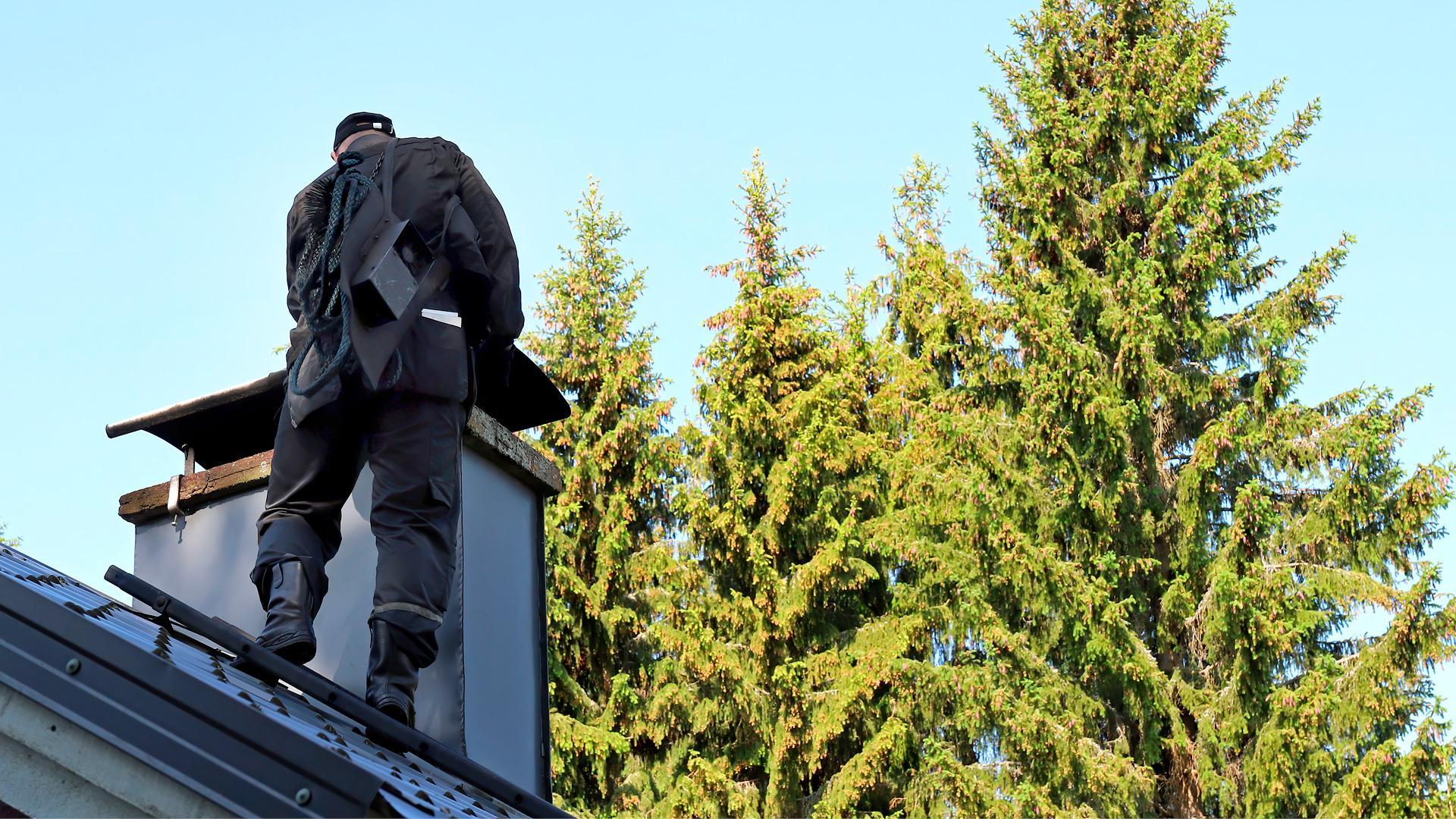 Nuohooja katolla